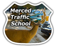 Merced Traffic School