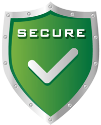 This page is secure and your information is protected.